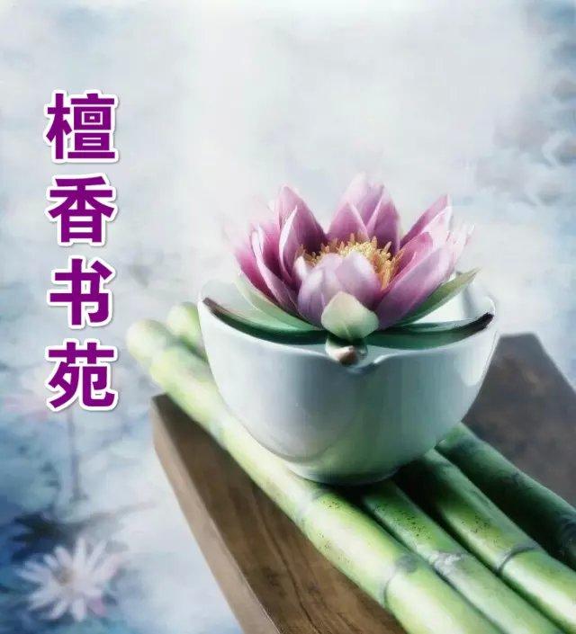 【檀香】水中礁(诗歌)